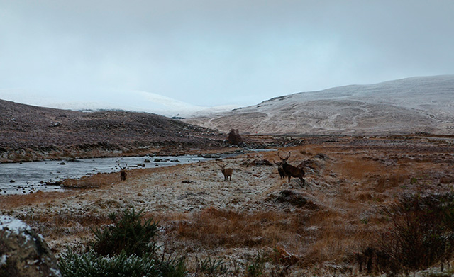 20171218_road_to_Harris_1