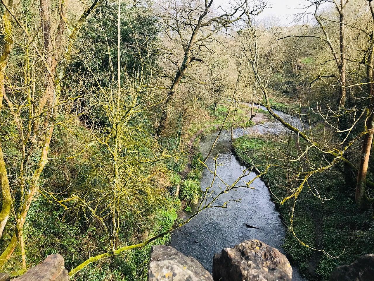 イギリスの自然