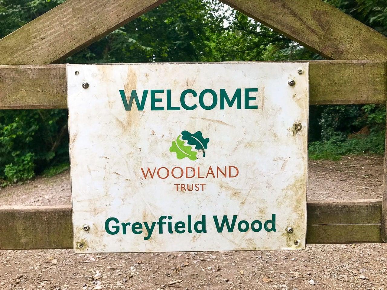 グレイフィールド·ウッド